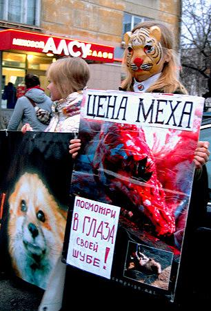Новости о защите животных