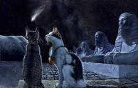 История появления кошки