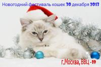 Новогодний фестиваль кошек к Москве