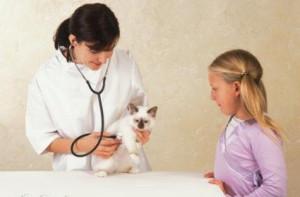 Ветеринария и этика
