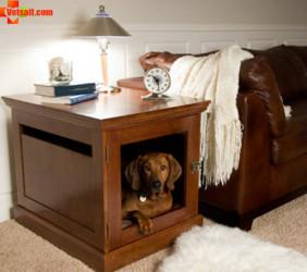 Содержание собак в квартире
