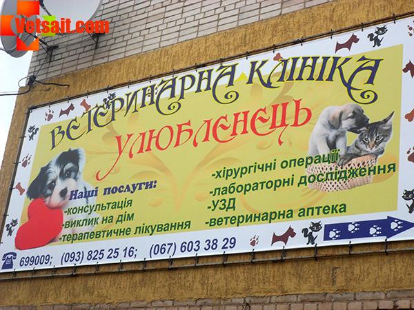 """Ветеринарная клиника в Виннице """"Любимец"""""""