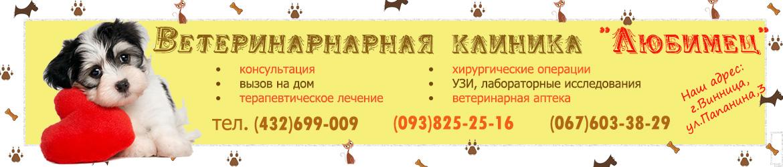 """Ветеринарная клиника """"Любимец"""" в Виннице: услуги и цены"""