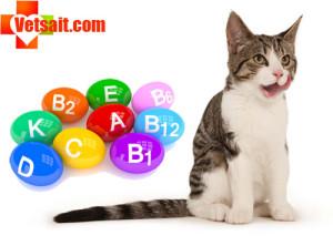 Какие витамины давать кошке беременной