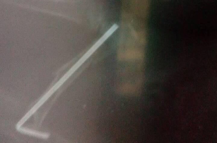 Інтрамедулярний остеосинтез у морської свинки діафізарний перелом